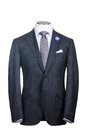 Formal suit Royalty Free Stock Photography