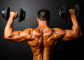 Formation de Bodybuilder Photographie stock