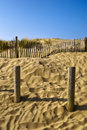 Formby sands Stock Photography