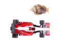 Formula snail race from above a and an f toy car ready to seen Stock Photos