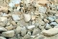 Forsaken quarry Royalty Free Stock Photo