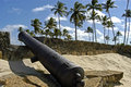Fort orange cannon and palm trees brazil a piece dutch history in the north east brazilian tropics the best preserved building of Royalty Free Stock Photos