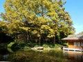 Fort Worth Japenese Garden Tea House Royalty Free Stock Photo
