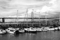 The forth road bridge queensferry scotland black white Royalty Free Stock Photos