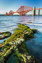 The Forth Road Bridge and seaweed Royalty Free Stock Photography