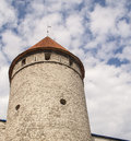 Fortress tower in old tallin town of estonia Stock Images