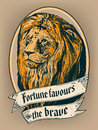 Fortune favours the brave for poster, t-shirt or label print Royalty Free Stock Photo