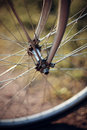 Forward wheel of the bicycle. Royalty Free Stock Photo