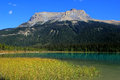 Fossils range at emerald lake yoho national park canada british columbia Stock Image