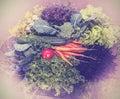 Foto do vintage de vegetais saudáveis frescos misturados Imagem de Stock Royalty Free