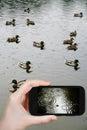 Foto que toma turística del círculo en charco de la lluvia Fotos de archivo libres de regalías