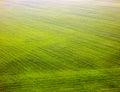 Fotografia de cor dos campos da vista superior Foto de Stock Royalty Free