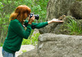 Fotographer wildlife chipmunk concept of nature protection woman photographer hand feeding tamias sibiricus by sunflower seeds and Royalty Free Stock Photography