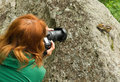 Fotographer wildlife chipmunk nature woman photographer shooting tamias sibiricus in the sitting on the stone photo taken in the Royalty Free Stock Image