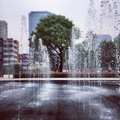 Fountain the in the city Stock Photography