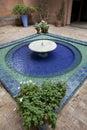Fountain in the Majorelle gardens Royalty Free Stock Photo