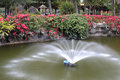 Fountain in the middle of a pond Royalty Free Stock Photo