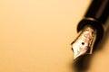 Fountain pen Royalty Free Stock Photo