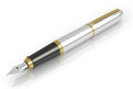 Fountain pen with white gold Royalty Free Stock Photo
