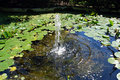 Fountain pond Royalty Free Stock Photo