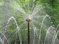 Fountain the Sun in Peterhof Royalty Free Stock Photo