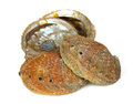 Four abalone shells on a white background Stock Photo