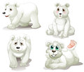Four adorable polar bears illustration of the on a white background Royalty Free Stock Images