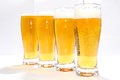 Four beer glass golden thick bubbles white alehouse beverage mug alcohol Royalty Free Stock Photo