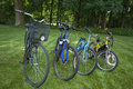 Four bicycles in the park after family excursion Stock Image
