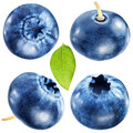 Four blueberries with leaf file contains clipping paths in different veiw shot studio isolated Royalty Free Stock Images