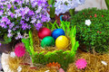 Four colorful easter eggs in a natural straw with flowers Stock Images