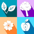 Four colorful icons with nature elements eps Stock Photo