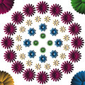 Four colors flowers circles vector illustration Stock Photography