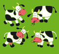 Four cows Stock Photography