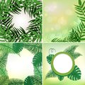 Four different frames with leaves and vines Royalty Free Stock Photo