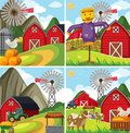 Four farm scenes with red barn and farm animals Royalty Free Stock Photo