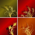 Four floral backgrounds Royalty Free Stock Images