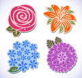 Four flowers rose chrysanthemum hydrangea lily vector illustration of isolated on background created in adobe illustrator image Royalty Free Stock Image
