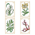 Four gentlemen flowers the also called the noble ones in chinese art refers to plants the orchid the bamboo the chrysanthemum Royalty Free Stock Photos