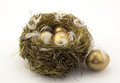 Four gold nest eggs Royalty Free Stock Photo