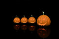 Four halloween pumpkins in black color background dark Stock Image