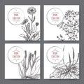 Four herbal labels with calendula, saint john wort, aloe, plantago Royalty Free Stock Photo