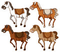 Four horses Royalty Free Stock Photo