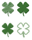 Four Leaf Clover Variety Stock Photo