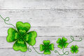 Four leaved clovers st patrick background on white wooden banner celebrating patricks day on march th traditional symbol of luck Royalty Free Stock Photos