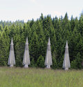 Four military missiles hidden in forests ready to be launched Royalty Free Stock Photo