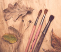 Four old used paintbrushes and autumn leaves Royalty Free Stock Photo