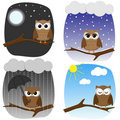 Four owls on branch Royalty Free Stock Image
