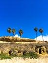 Four Palm Trees California Beach