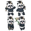 Four panda graduation illustrations